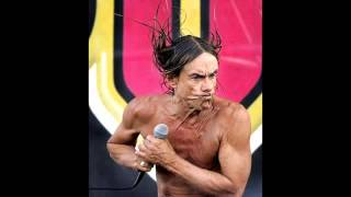 Iggy pop   the stooges   Never met a girl like you before