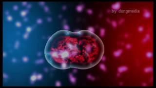 [tut] After Effects | tạo hiệu ứng tế bào |dungmedia