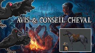 [Grim Soul] Conseil & Avis pour le CHEVAL Ep.52