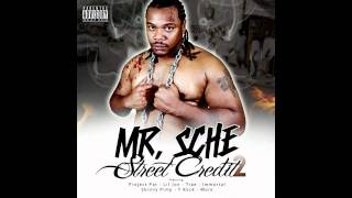 Mr.Sche - The Drunken Master