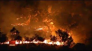 Továbbra is pusztít a tűz Kaliforniában