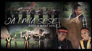 Download lagu JAI BAJAWA TERBARU MIA SESE || DEDI TURE x WERE VOICE|| OFFICIAL MV