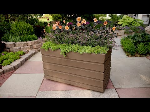 Planting in a Rectangular Container // Garden Answer