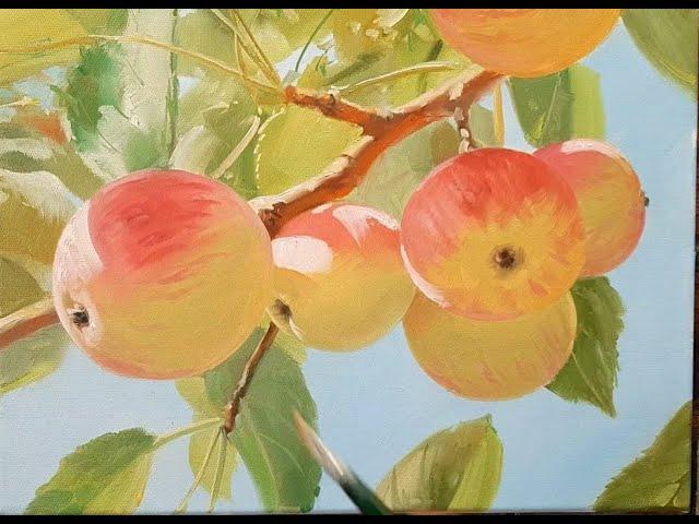 apples яблоки vugar mamedov