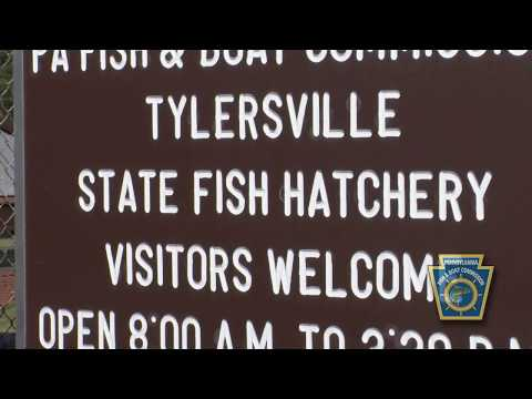 Tylersville State Fish Hatchery
