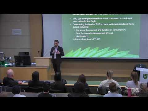Marijuana Legalization: Impacts on Students, Employers and the Public