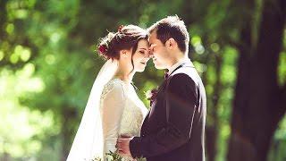 Свадьба Алины и Сергея. Свадебная компания