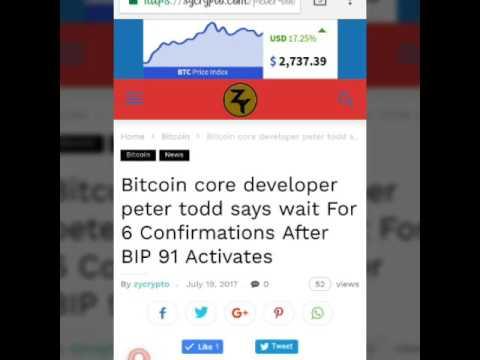 Bitcoin core developer ,peter Todd warns Bitcoin users