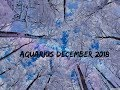 Aquarius December 2018 ~ Don't Fight the Happiness, It's Not Over