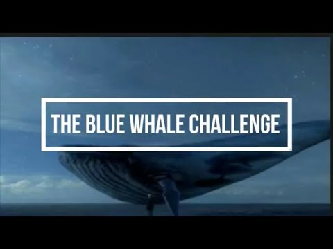 हिंदी The Blue Whale Game in Hindi । 50 tasks of the Blue Whale Challenge INDIA । Don't Try