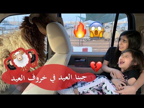 جبنا العيد بخروف العيد 😱😂صدمة عمر ولا حسبنا حسابها 🤕🔥🔥