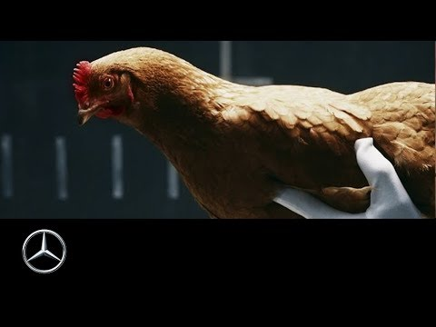 "Mercedes-Benz ""Chicken"" MAGIC BODY CONTROL TV commercial"