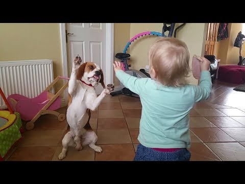 Dogs are More Than Pets, They are Family | Charlie the Dog and Baby