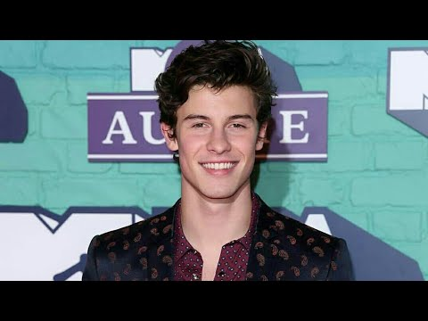 Shawn Mendes at the MTV EMA red carpet