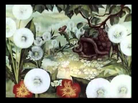 Мультфильм о черепахе и временах года