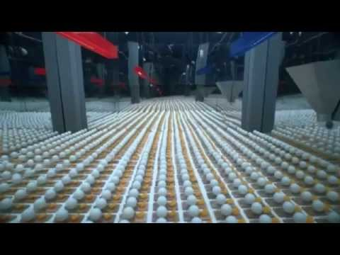 Ulimate Chain Reaction created by 2014 mousetraps and 2015 Ping pong balls
