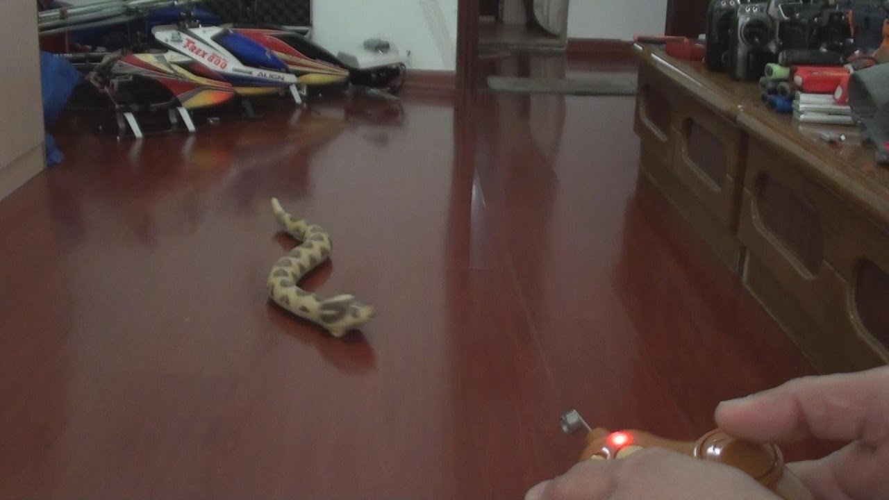 Rc Rattle Snake Crawling Video Youtube
