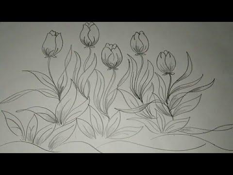Cara Menggambar Sketsa Bunga Sketsa Youtube