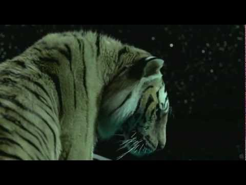 Life of Pi Official Trailer [HD] 2012
