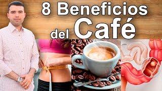 8 propiedades y beneficios del cafe para la salud mejores usos y efectos del caf