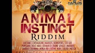 Dj lyta animal instict riddim Mp4 HD Video AmarMon