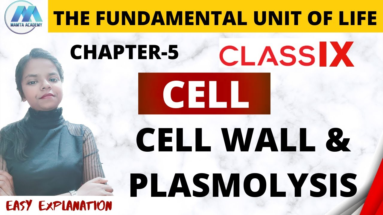 CELL WALL   PLASMOLYSIS   EASY EXPLANATION   CHAPTER 5 ...