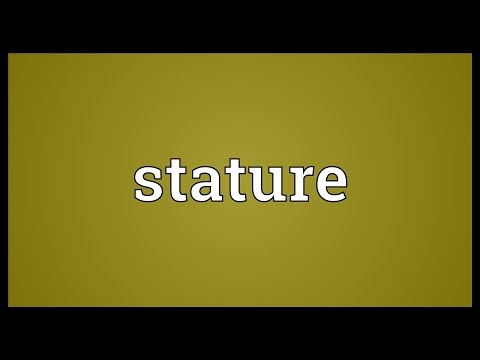 Stature Meaning