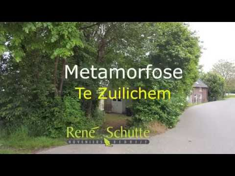 Metamorfose te Zuilichem