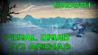 Smooth - Feral Druid 3v3 Arena Tournament 3.3.5