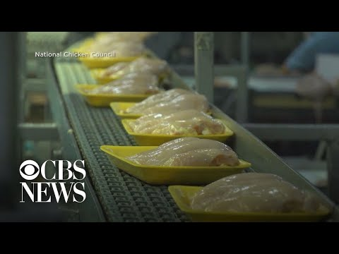 Chicken in high demand after winter freeze disrupts supply