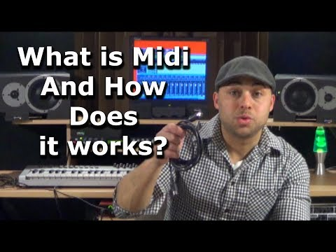 What is Midi And How does it Work?