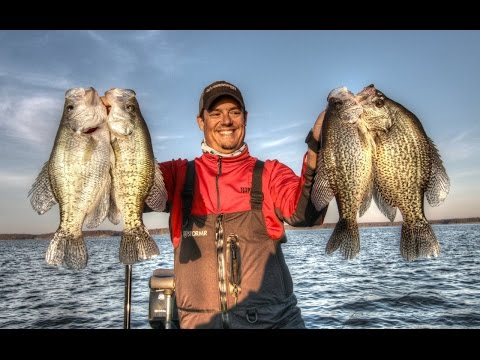 Fishing For BIG Crappie On Brush Piles!