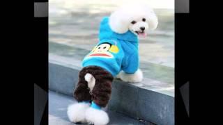 как подобрать одежду для собаки(http://vk.cc/36OJZQ Крупнейший интернет-магазин зоотоваров в рунете. Заходите!, 2014-11-01T04:57:45.000Z)