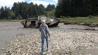 Exploring an Abandoned Shipwreck!