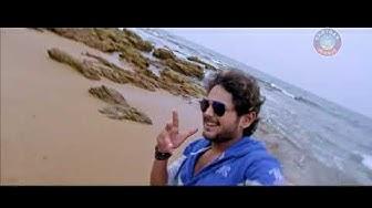 Made In Odisha (Tiger) - OdiaStar.Com