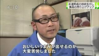 2012年1月26日放送 氷温熟成「氷室豚」株式会社クリマの紹介.