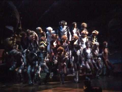 "Jellicle Cats  musical ""Cats"" Russia"