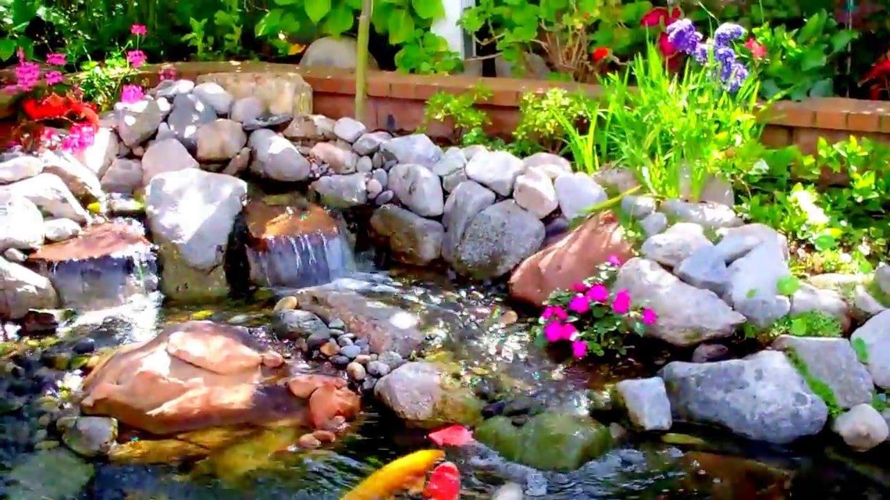 Los angeles most beautiful koi pond enviroscape la youtube for Koi pond videos