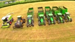 silage men 50 years gobbling grass