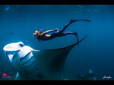 Alison Teal Free Diving with Manta Rays