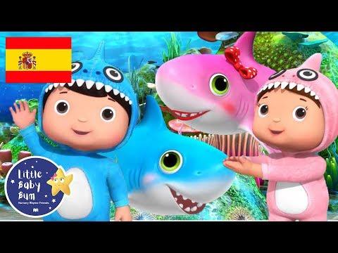 Canciones Infantiles | Bebé Tiburón | Parte 2 | Dibujos Animados | Little Baby Bum en Español