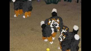 My Dogz 5 Clan!