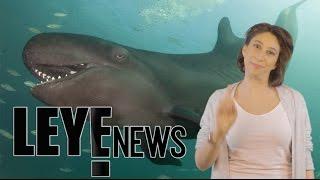Leye News- Semana del 8 al 14 de dic.