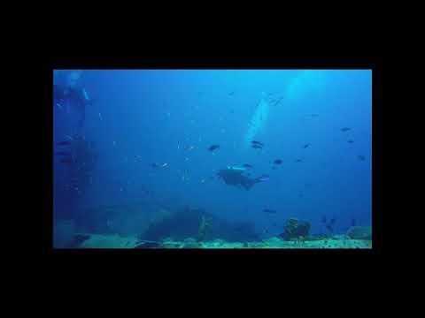 Barbados Dive 2017