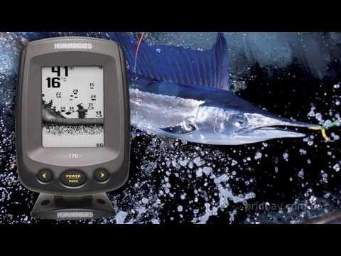 ловля сома с эхолотом пиранья видео