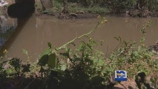 Baldwin Sewage Spill; New Information