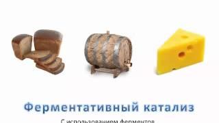 Видеоурок ''Катализаторы и катализ'' - ХИМИЯ - 9 кл.