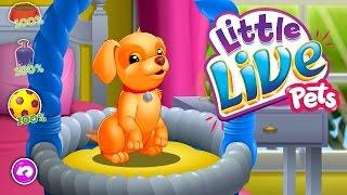 Little Live Pets Маленькие домашние животные Обзор игры на русском Best KIds Apps