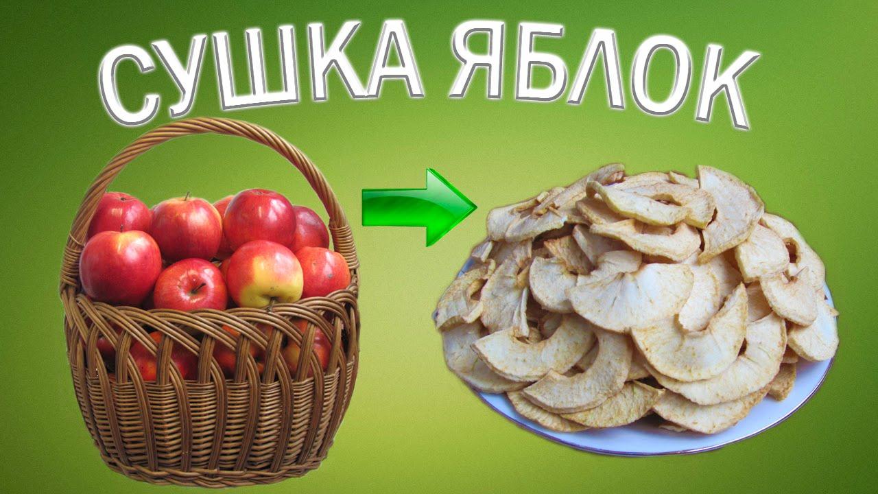 Сушеные яблоки. Состав, свойства, как готовить 97