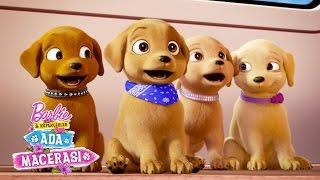 Köpekçiklerin oyun parkı | barbie & her sisters in a puppy chase | barbie
